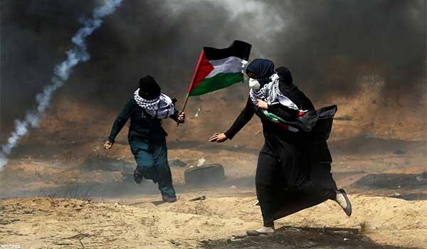 """João Pedro Borralho:  """"Situação na Palestina é a continuação do regime de ocupação militar, apartheid e limpeza étnica"""""""